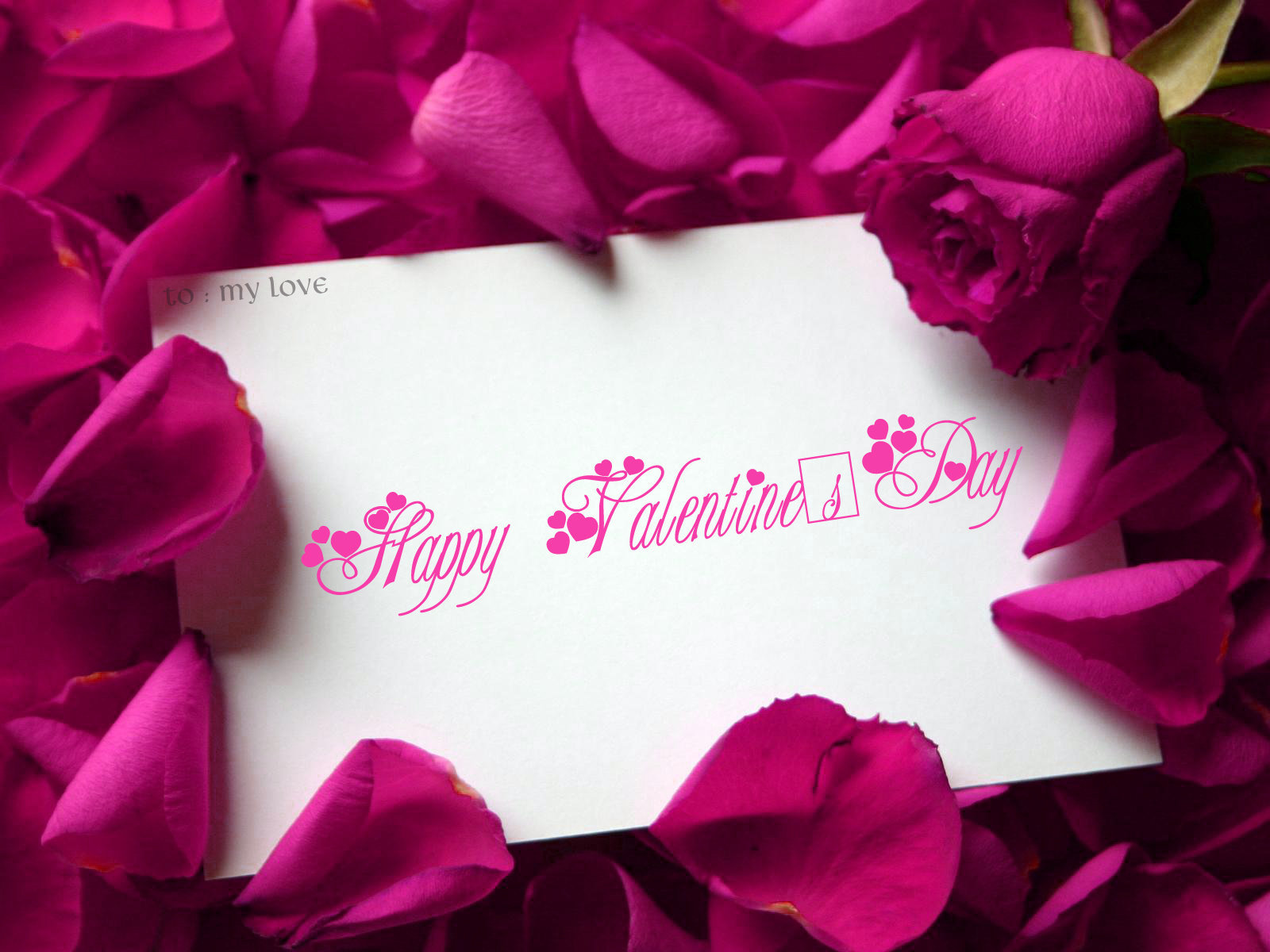 valentinesday happy valentines day